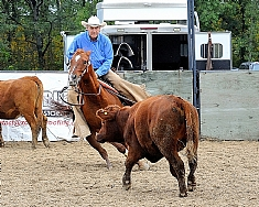 Glen Brown riding Hickorys Playdox